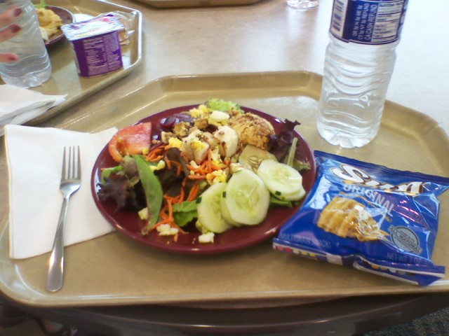 Cafeteria Food Pans ~ Ann out of the frying pan hospital food yum no