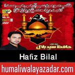 http://www.humaliwalayazadar.com/2015/10/hafiz-bilal-nohay-2016.html