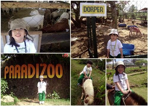 Paradizoo-Farm,zoo,Paradizoo,Cavite