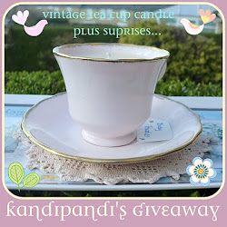 Check out Kandipandi's Giveaway