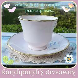 Check out Kandipandi's Giveaway