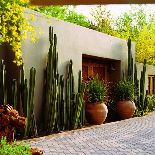 Como Fazer Um Jardim No Quintal Flores Cultura Mix Wallpaper Pictures