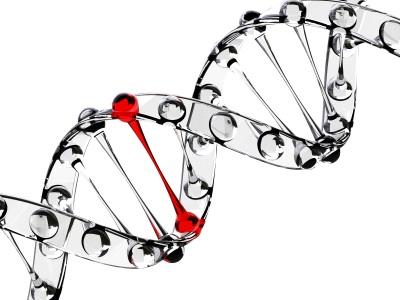 Rangkuman Materi Un Ipa Smp Fisika Biologi Dan Kimia Share The Knownledge