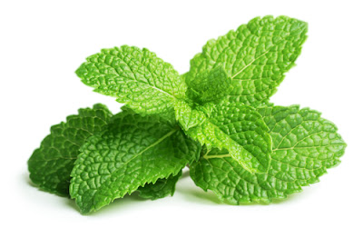 How to use peppermint in the kitchen