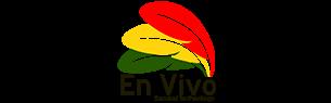 Bolivia En Vivo