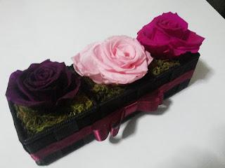 Rosas Naturales Preservadas Moradas, rosadas y fucsia ¡Duran 4 Años! Santa Ana, El Salvador