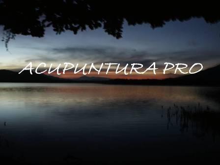 ACUPUNTURA PRO