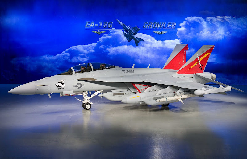 EA-18G Growler Electronic Attack Aircraft