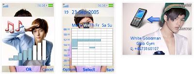 金明秀SonyEricsson手機主題for Elm/Hazel/Yari/W20﹝240x320﹞
