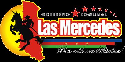 Alcaldia Bolivariana Las Mercedes del Llano