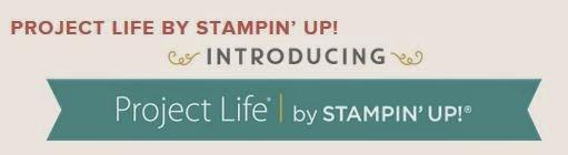 http://www.stampinup.net/esuite/home/franceskendrick/
