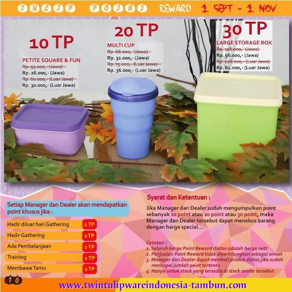Point Reward Twin Tulipware | September - Oktober 2014