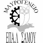 Ιστοσελίδα Μαυρογένειου ΕΠΑΛ Σάμου