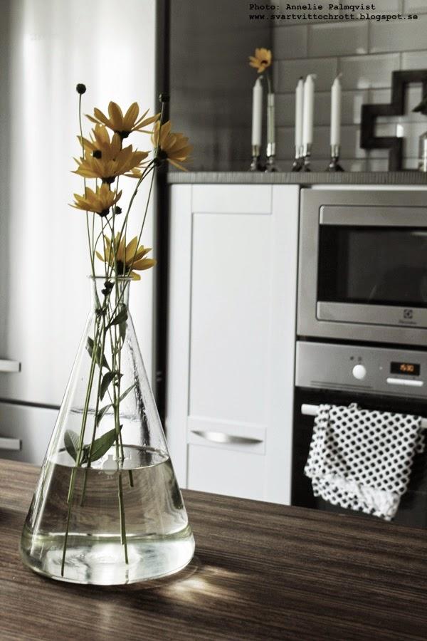 gula blommor från trädgården, gult, e-kolv, 5 liters kemiglas, 5 liter, e-kolvar, glas, vas, vaser, vasen, köksö, kök, industrikök, industriellt, industristil, grått, inspiration, inredning, interiör
