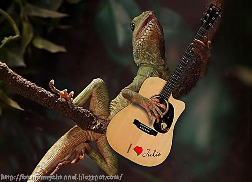 Funny lizard sings a serenade
