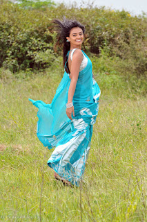 nikitha_narayana_hot_saree_stills_008.jpg