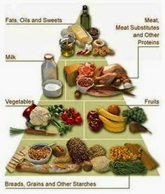 Protein's Role in Effective Weight Loss Diet