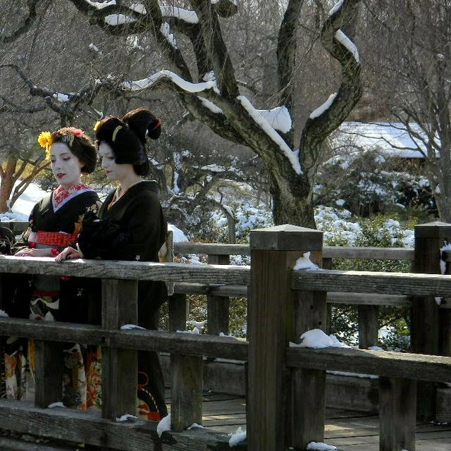 Title: Henshin on the Bridge - Description: Here Hasume-san and our retired member Suzuhana-san greet the new year in 2011 from the Koi Pond at the Missouri Botanical Garden.  Photo Credit: Andre Poulin