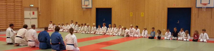 Slemdal Judoklubb