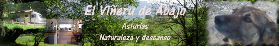 Turismo Rural en Asturias: El Viñeru de Abajo