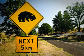 BEWARE OF MARSUPIAL SPEEDHUMPS