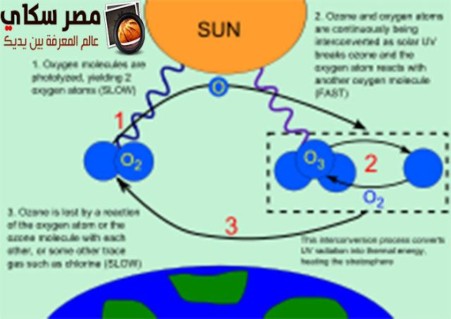 أهمية طبقة الأوزون والأشعة فوق البنفسجية