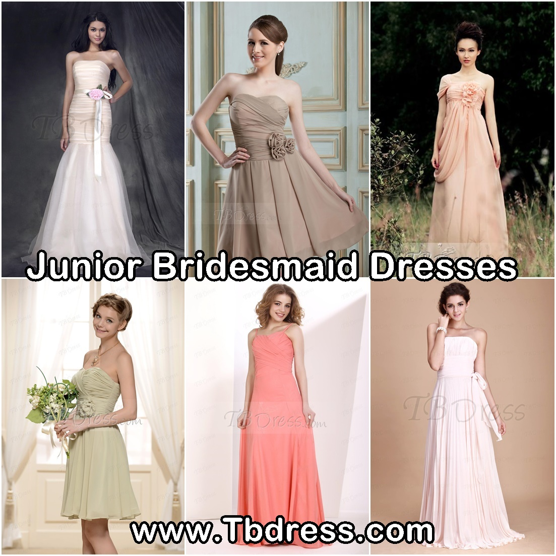 http://www.tbdress.com/Cheap-Junior-Bridesmaid-Dresses-101142