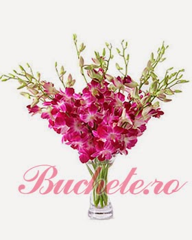 Selected Orchids flowers delivery in Romania