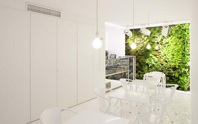 9 lindos jardins verticais de interior