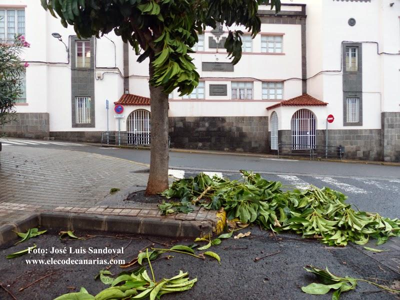 Las clases no se suspenden Canarias lunes 24 noviembre