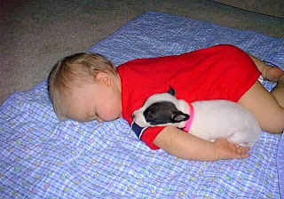Funny Pictures: Baby sleeping with dog