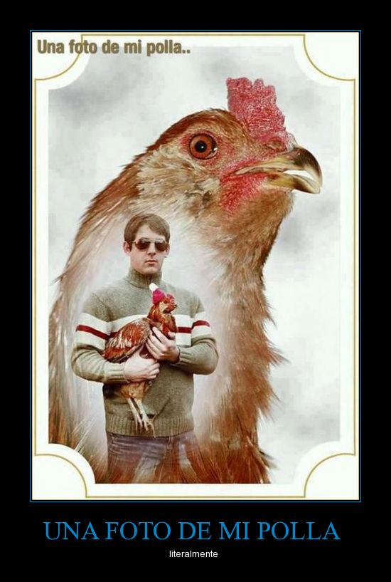 Awkward Family Chicken S