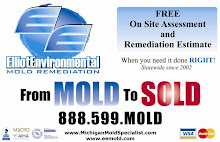 Michigan Mold Specialists