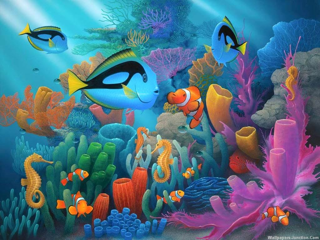 Aquarium Wallpapers Download for Free