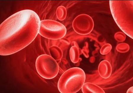Memahami Fungsi Sel Darah Merah, Sel Darah Putih, Plasma, Keping Darah dan Trombosit