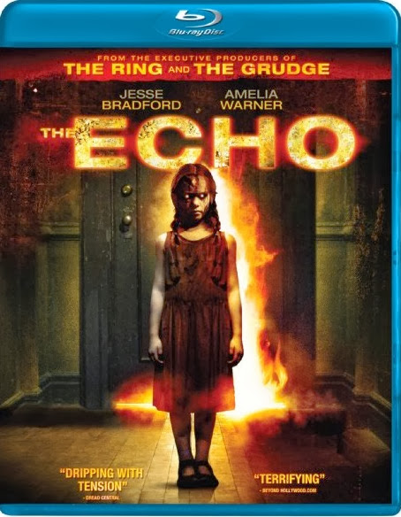 The Echo 2008 Hindi Dubbed Dual Audio BRRip 300mb