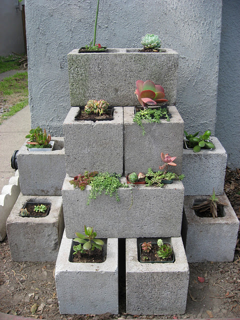 Minneapolis homestead dreaming of concrete blocks raised beds planters tables and benches for Painting cinder blocks for garden