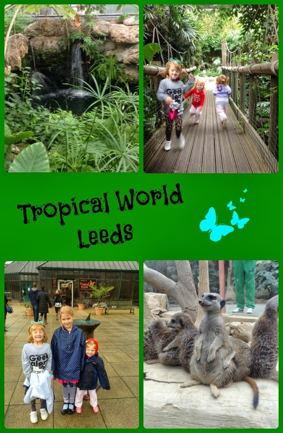 Tropical World Leeds