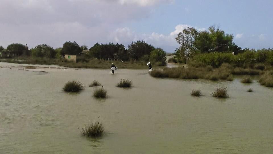 Tsimari