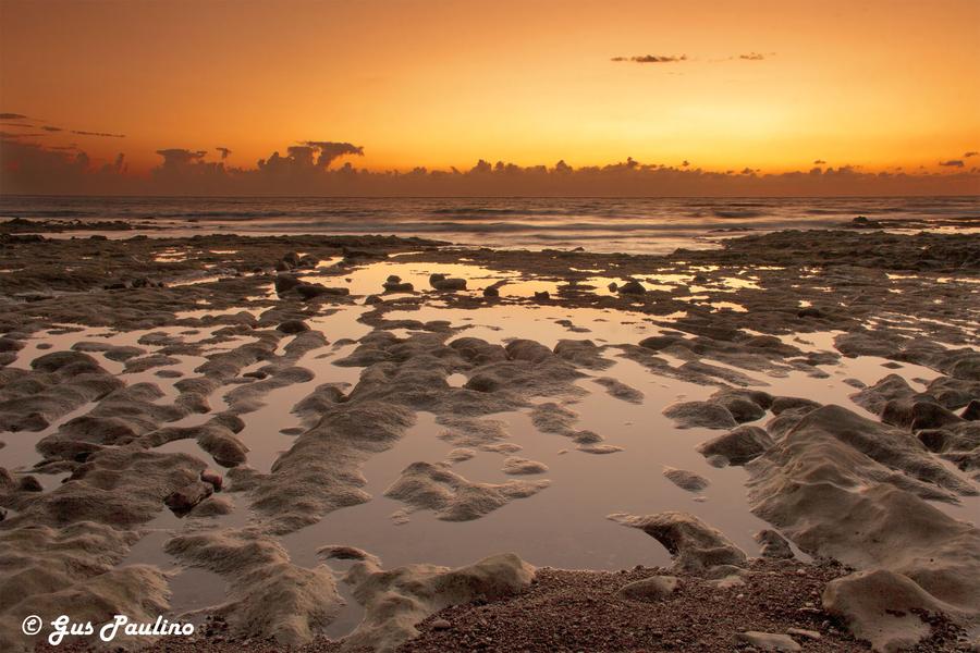 Landscapes of Tenerife - Page 6 Playa+de+El+Medano