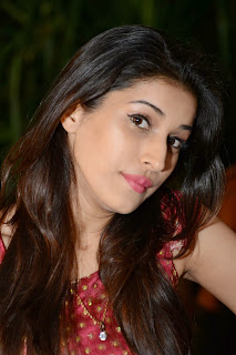 Actress Sabha Picture Gallery in Red Dress at Bunny n Cherry Audio Launch Function 0005.jpg
