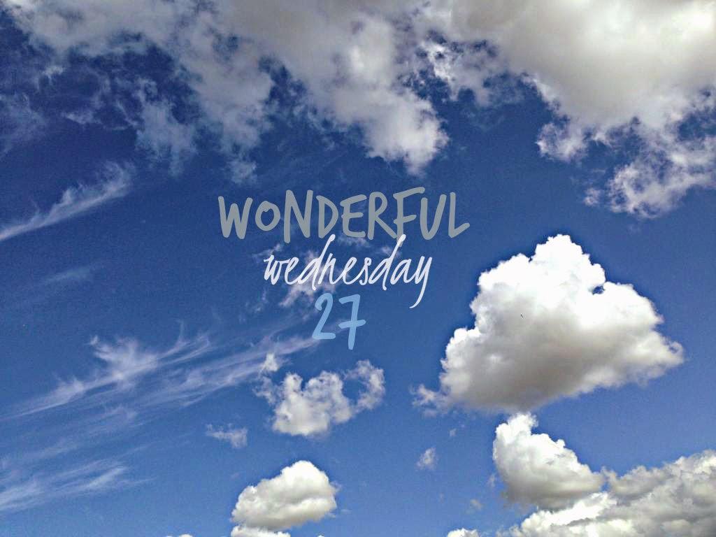 Wonderful Wednesday #27