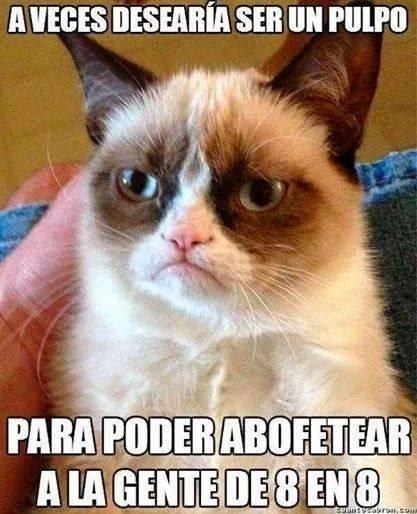 Grumpy Cat: A veces desearía ser un pulpo...
