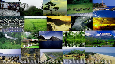Visit the beautiful places in Kerala, the gods own country