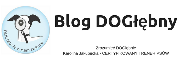 Blog DOGłębny