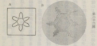 『雪華図説』の研究 模写図と顕微鏡写真と比較 第二十二図