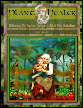 Plant Healer Magazine