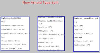 Arnold type workout split