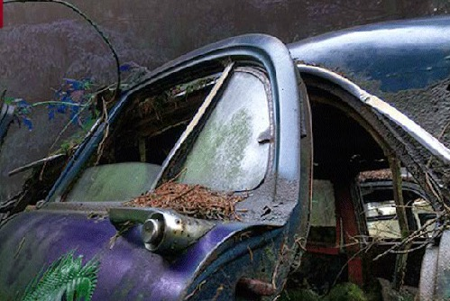 GamesNovel Abandoned Cars…