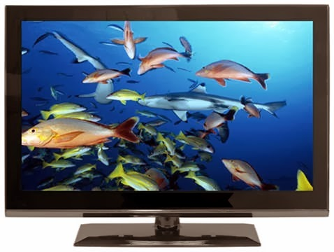 tv screen with fish